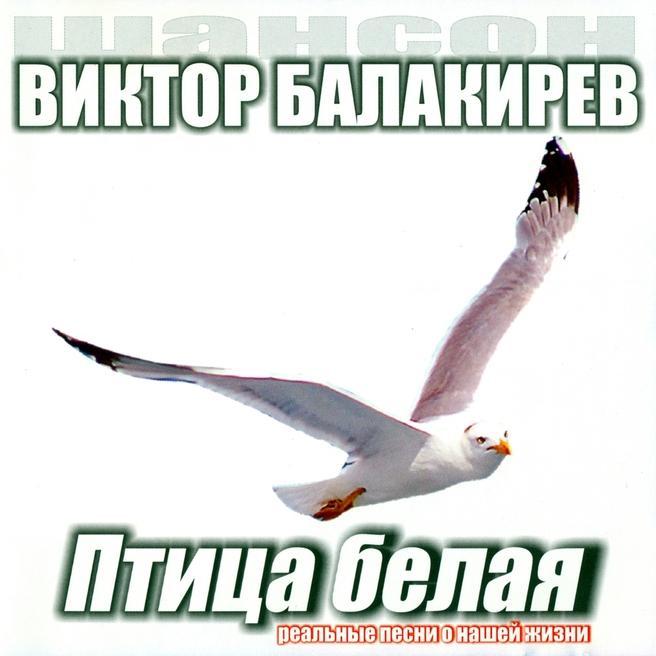 Виктор Балакирев - Птица белая