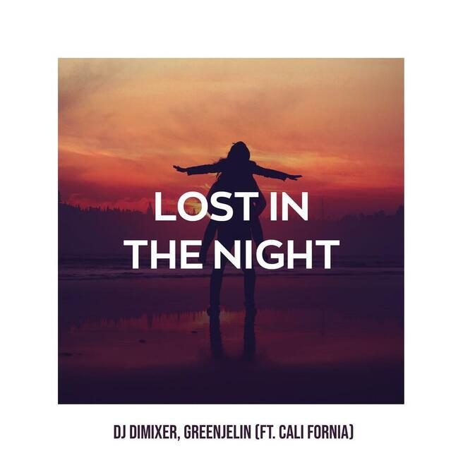 DJ DimixeR & Greenjelin  feat. Cali Fornia - Lost in the night